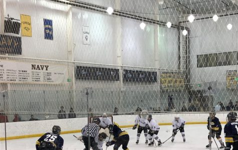 Ice Hockey in the playoffs