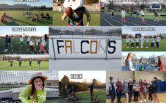 Falcons Sports Christmas