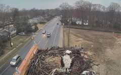 The osprey camera is up and running thanks to a partnership with Comcast and the Maryland Raptor Conservation Center.