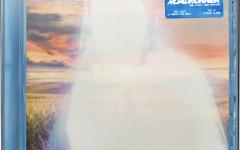 Brockhampton's Roadrunner: New Light, New Machine Review